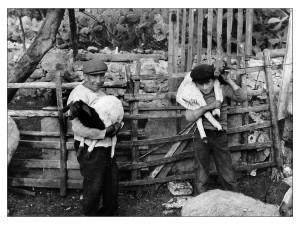 03-pastori-con-agnellini-foto-nino-privitera