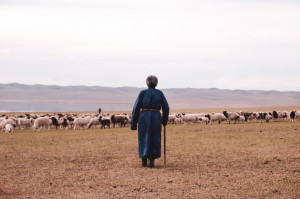 dscf0320_da-qualche-parte-in-mongolia
