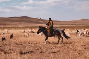 dscf0483_da-qualche-parte-in-mongolia