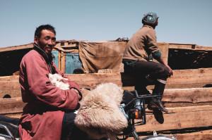dscf8761_da-qualche-parte-in-mongolia