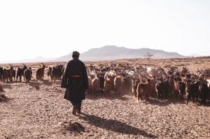 dscf9618_da-qualche-parte-in-mongolia