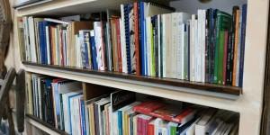 biblioteca-03-scaled-2000x1000