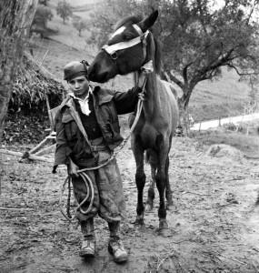 San Nicola da Crissa, 1950 (ph. Seymour)
